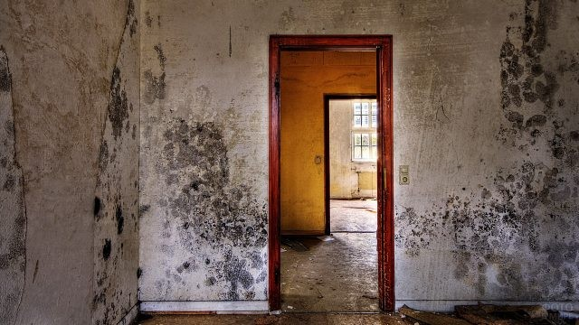 Пустая комната без дверей