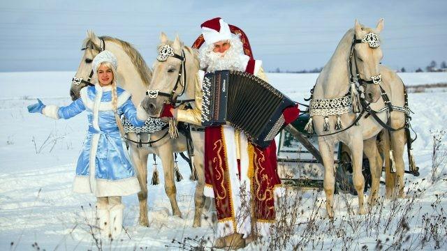 Дед Мороз с аккордеоном и Снегурочка рядом с тройкой белых коней