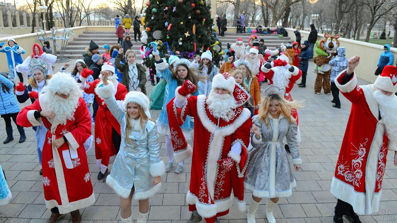 Деды Морозы и Снегурочки танцуют у городской ёлки в Новороссийске