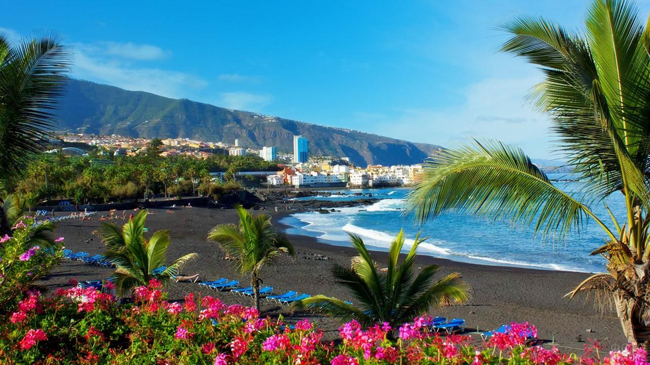 Чёрный пляж с пальмами в Пуэрто-де-ла-Крус