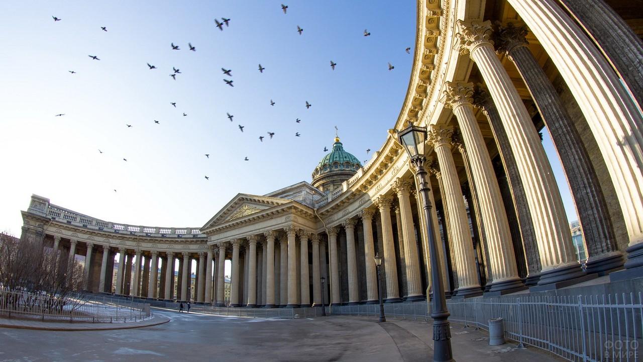 Птицы в небе над храмом