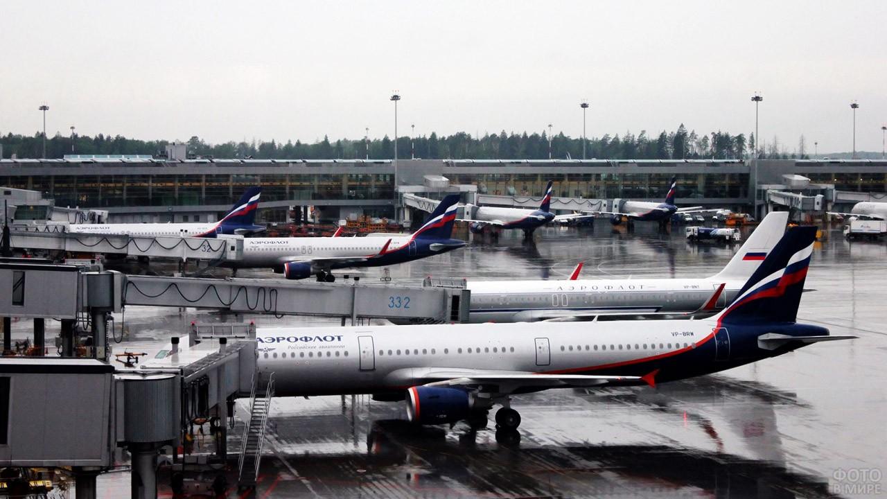Самолёты Аэрофлота на перроне терминала D
