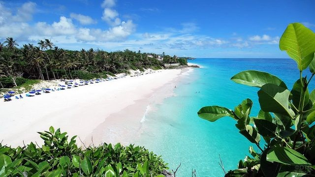 Остров Барбадос на Карибах