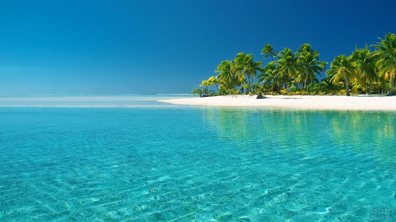 Остров с пальмами в Карибском море