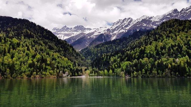 Летняя зелень на берегах озера