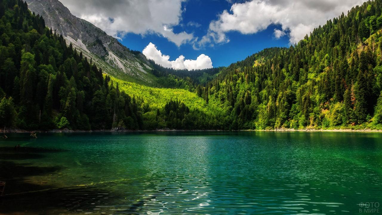 Панорама озера Малая Рица