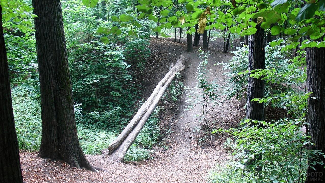 Эко-тропа на холмах над оврагом