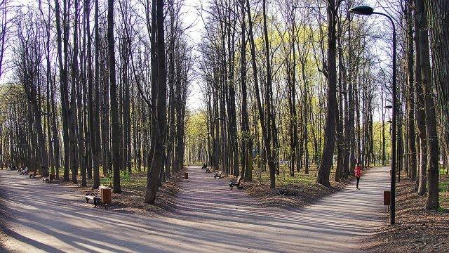Панорама весенних аллей