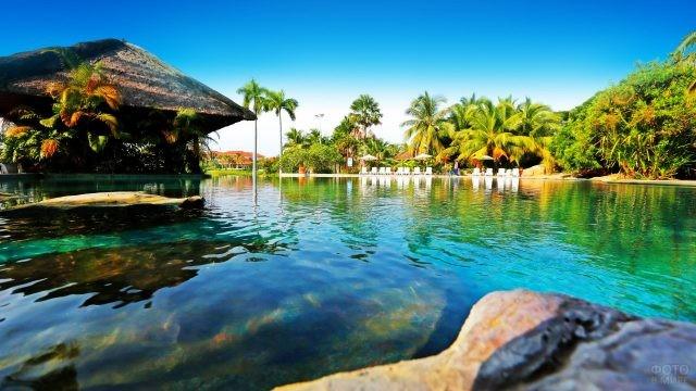 Бассейн при отеле стилизованный под дикую природу