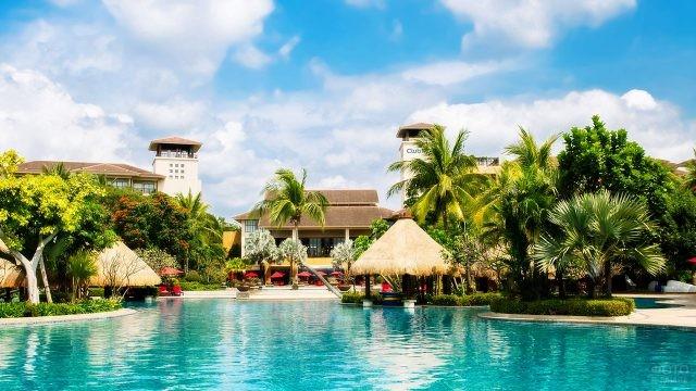 Бассейн с пальмами и тропическими зонтиками