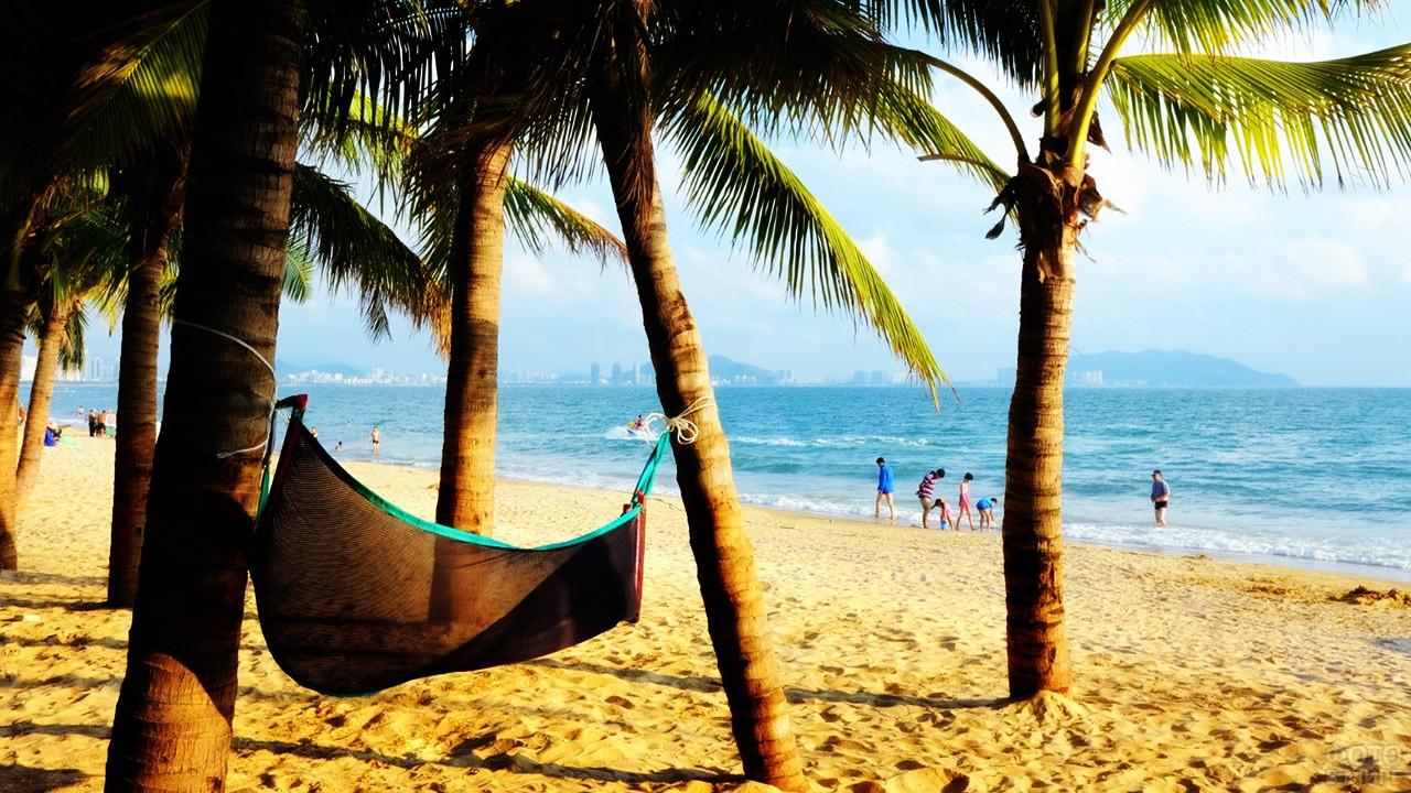 Гамак под тенистыми пальмами на пляже