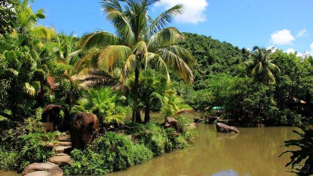 Эко-маршрут в джунглях парка Янода