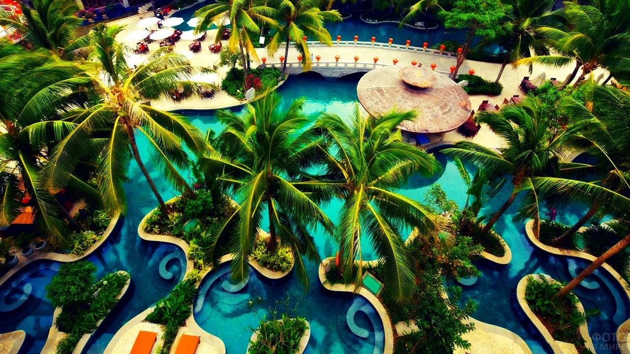 Красивый орнамент бассейна под пальмами