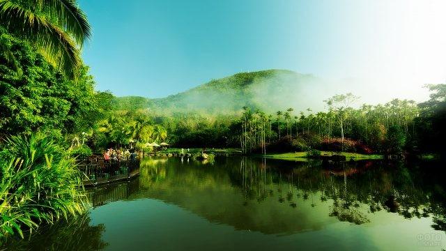 Панорама пруда в парке Янода