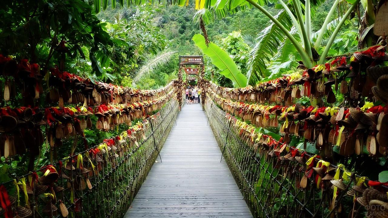 Подвесной мост в джунглях парка Янода