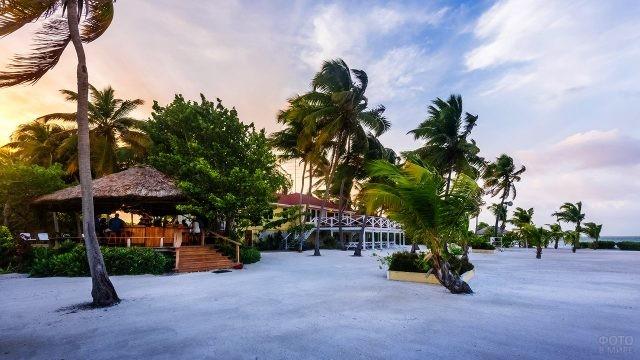 Кафе под пальмами на острове Тернефф
