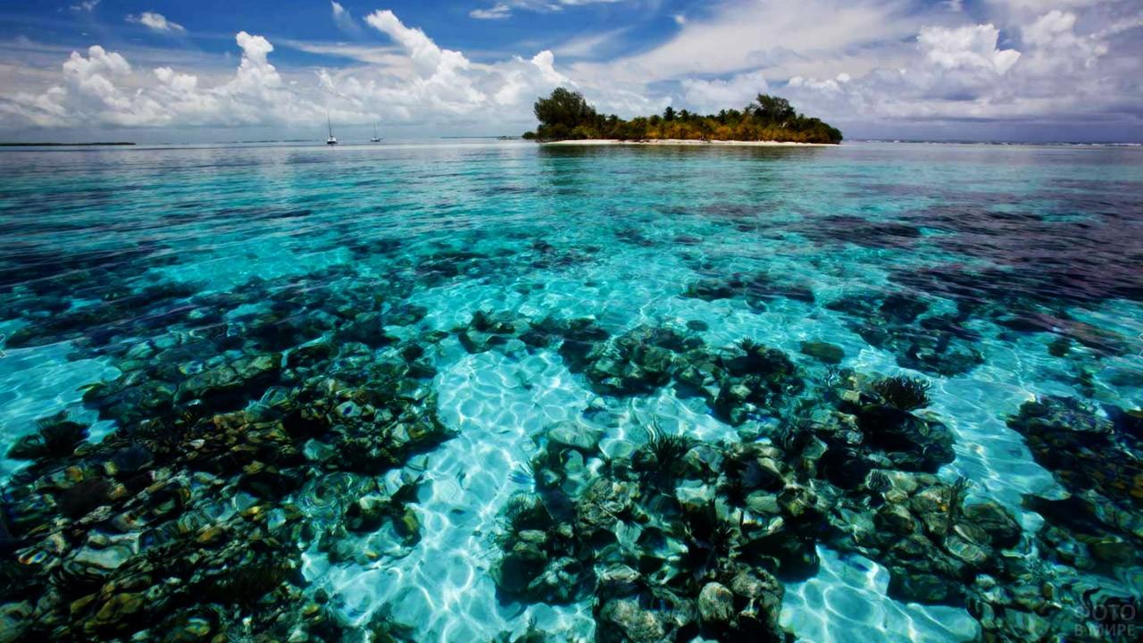 Прозрачные воды Тихого океана