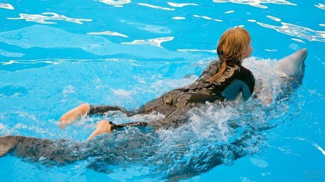 Дельфин катает девочку