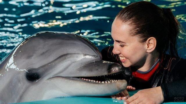 Дельфин общается с девушкой
