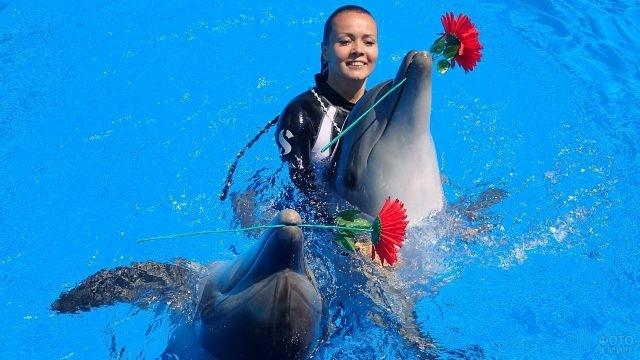Дельфины держат во рту цветы