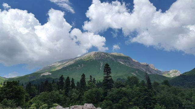 Гора Фишт со стороны Краснодарского края