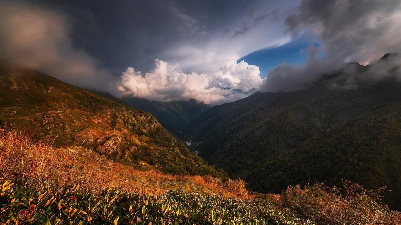Массив Псеашхо в Кавказском заповеднике