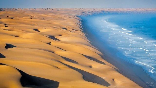 Атлантический океан омывает берега пустыни