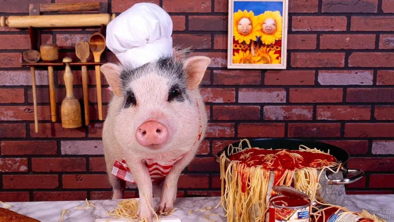 Поросёнок-повар готовит спагетти