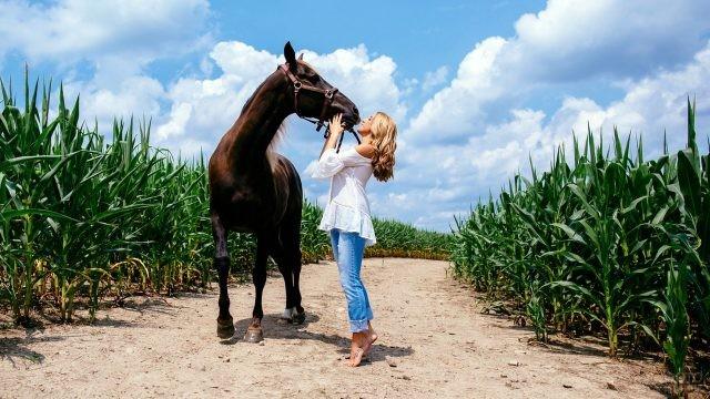 Девушка целует коня