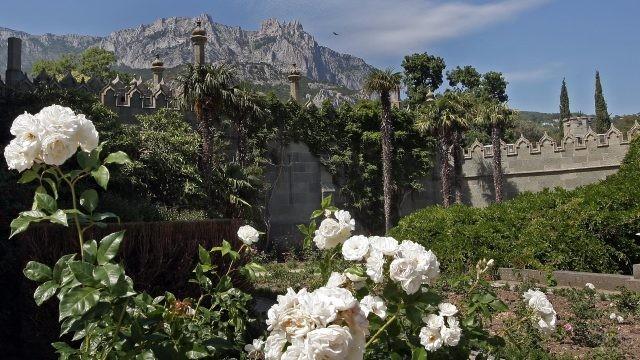 Пальмы в саду у стен замка