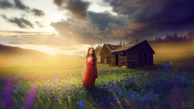 Девушка стоит на лугу с цветами