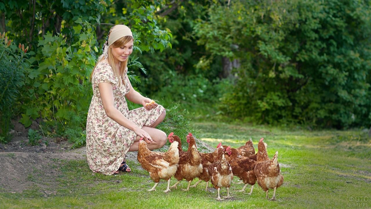 Девушка в платке кормит курочек