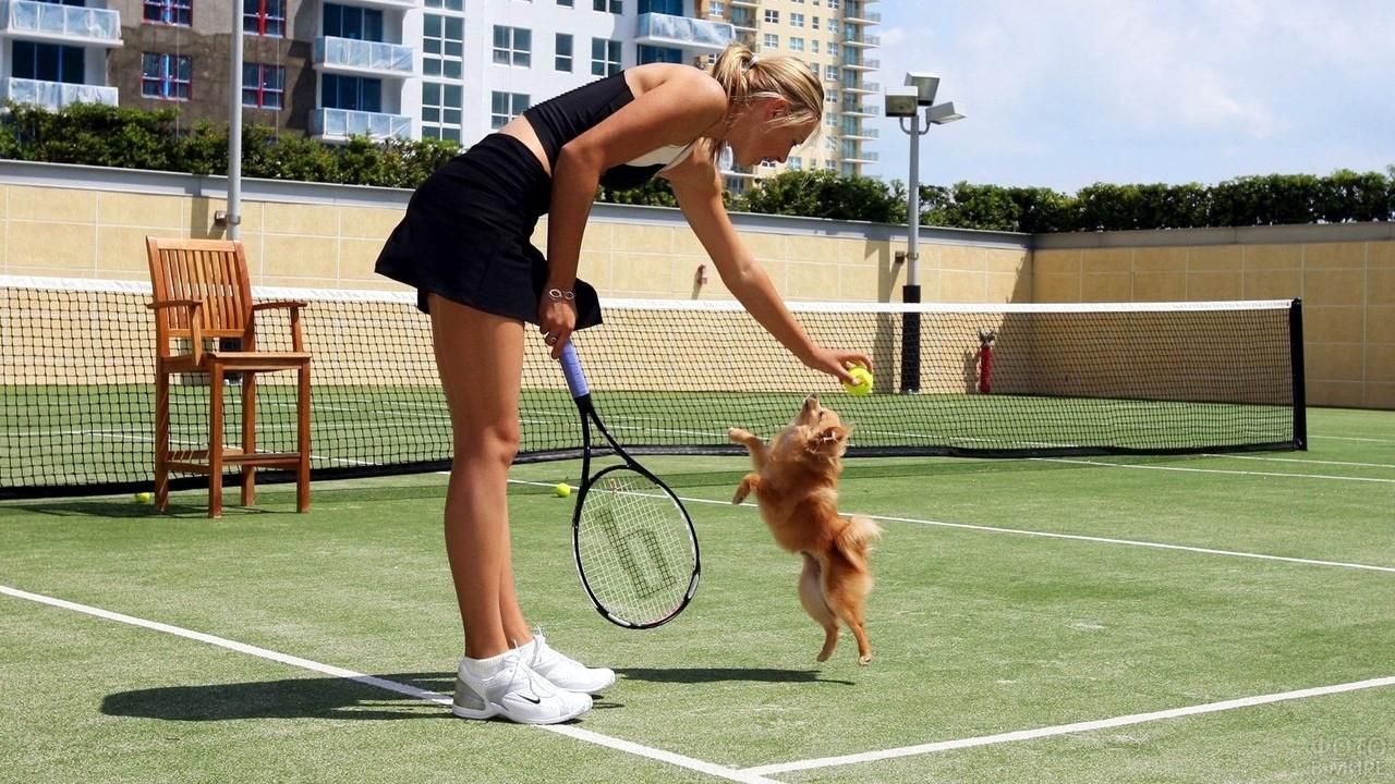 Теннисистка играет с собакой
