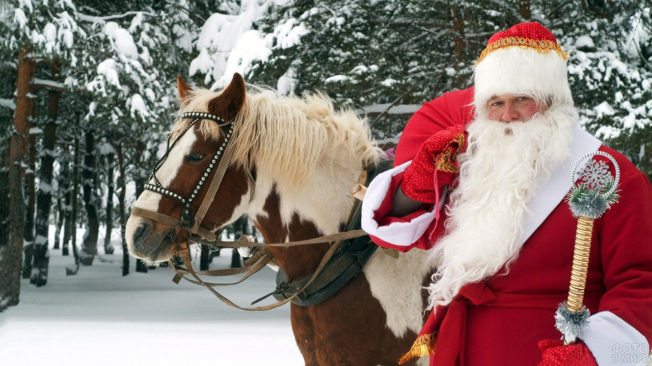 Дед Мороз с мешком подарков на плече рядом с лошадкой в заснеженном лесу