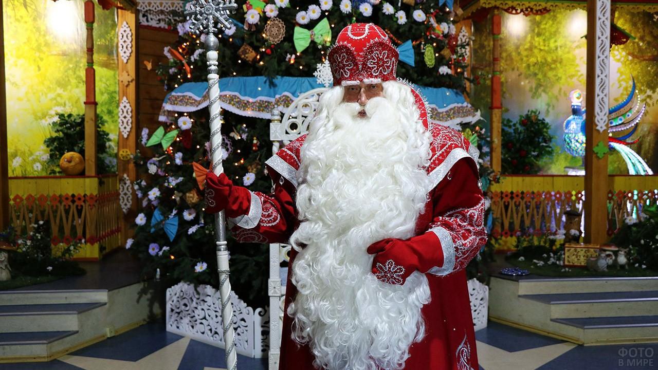 Дед Мороз у нарядной ёлки в Вологде