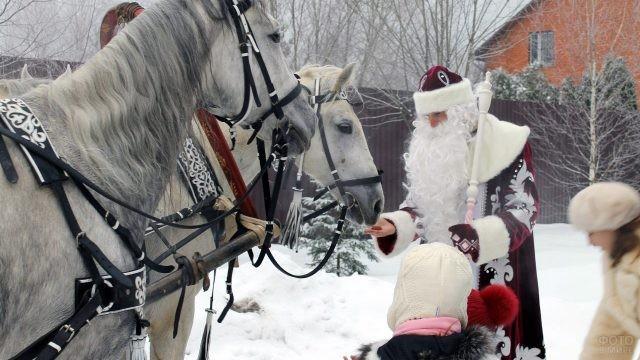 Дед Мороз в компании малышей кормит с руки белую лошадь