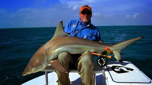 Довольный рыболов с пойманной акулой