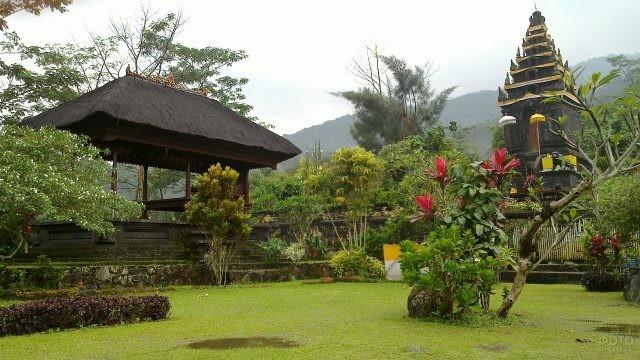 Растительность вокруг храмов