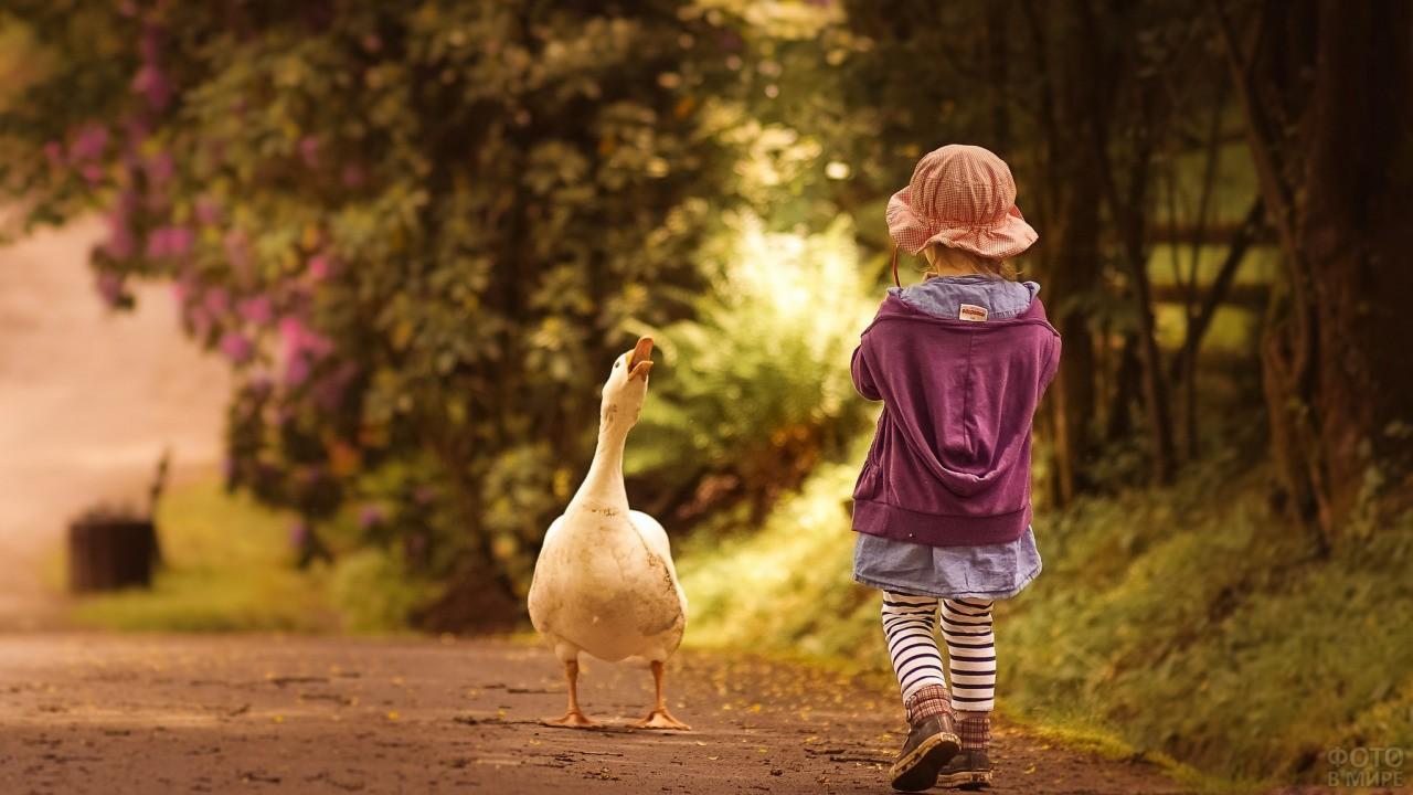 Девочка встретила гуся