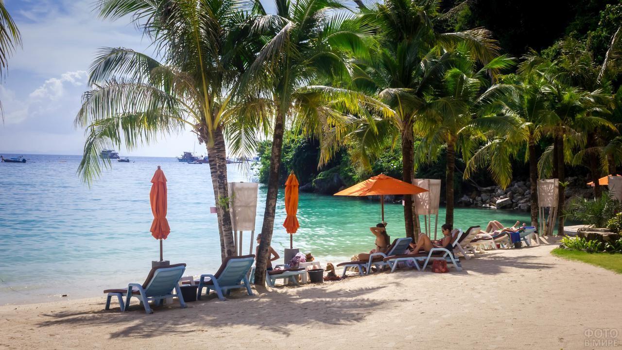 Отдыхающие среди кокосовых пальм