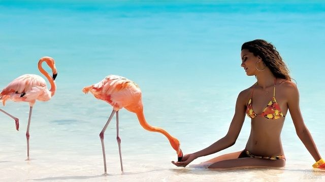 Девушка с розовыми фламинго
