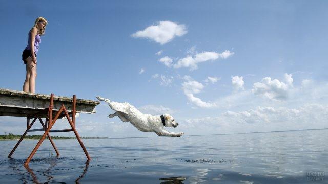 Девушка смотрит на собаку, прыгающую в море