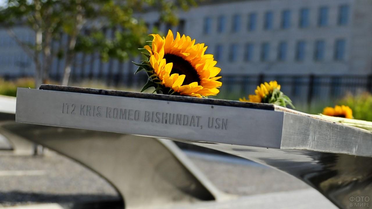 Подсолнух на мемориальном памятнике