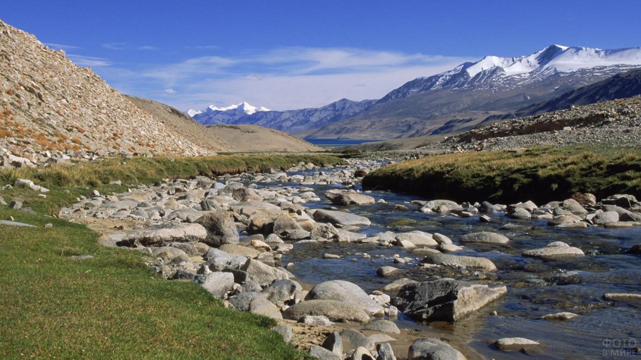 Множество камней в реке