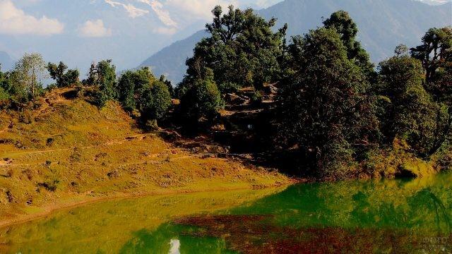 Отражение природы в реке