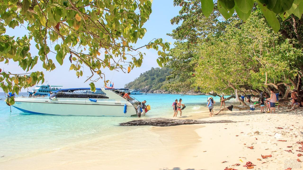 Туристы выходят с катера на пляж