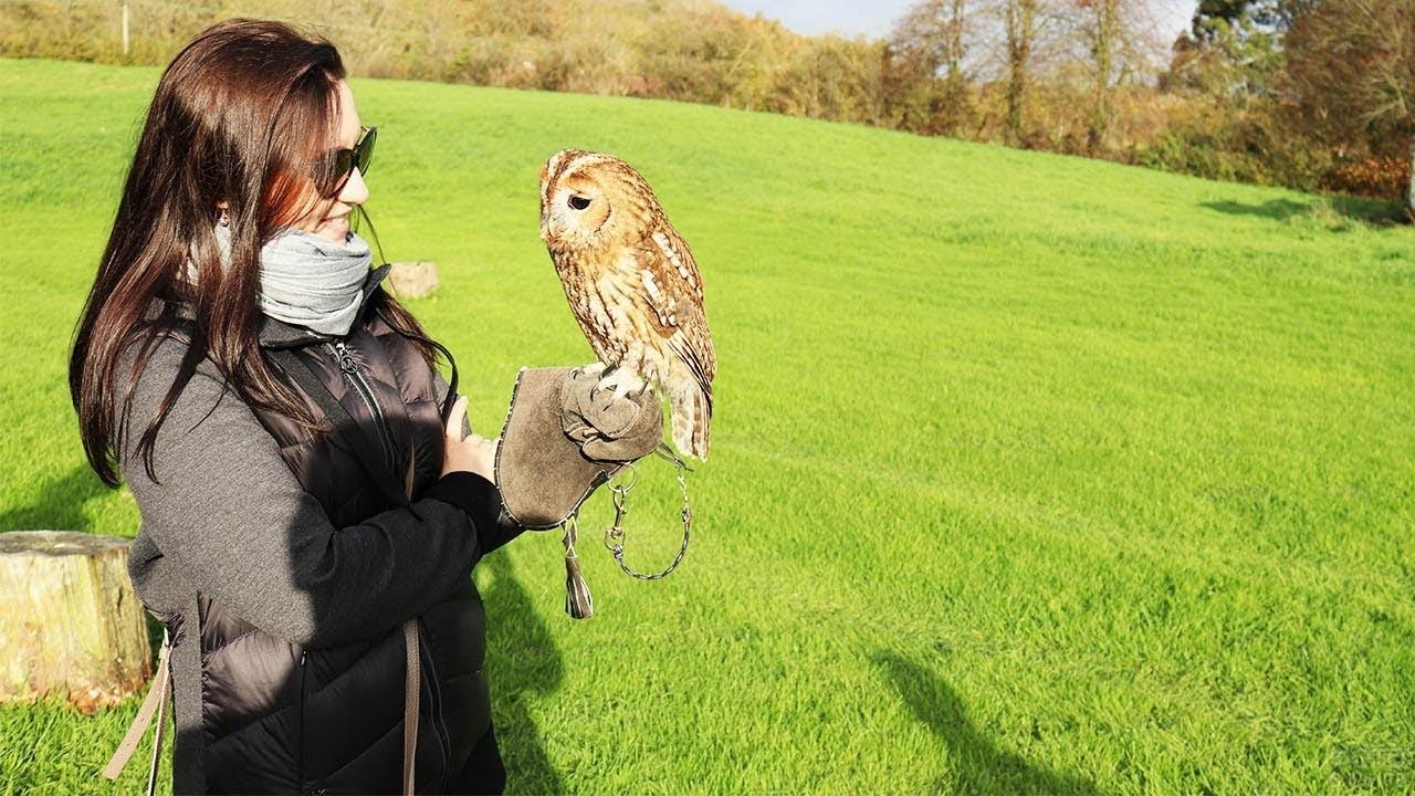 Девушка держит в руках сову