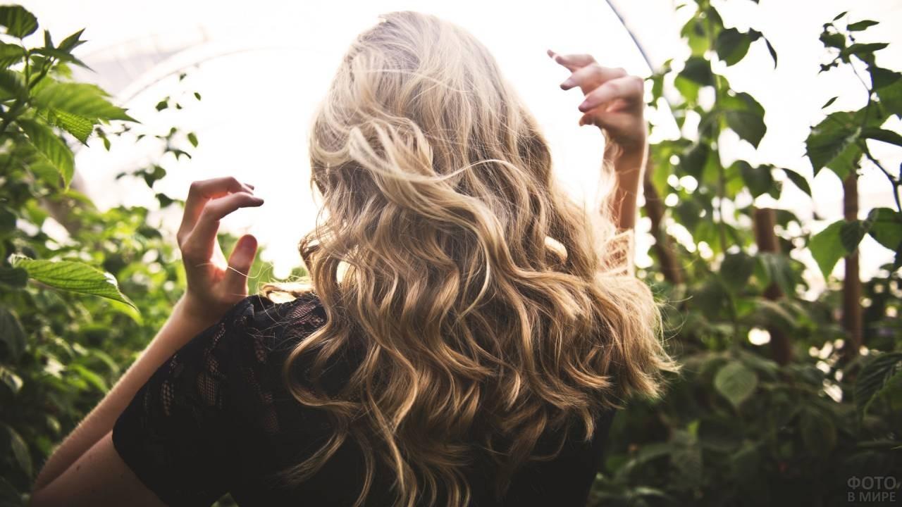 Блондинка в лучах солнца