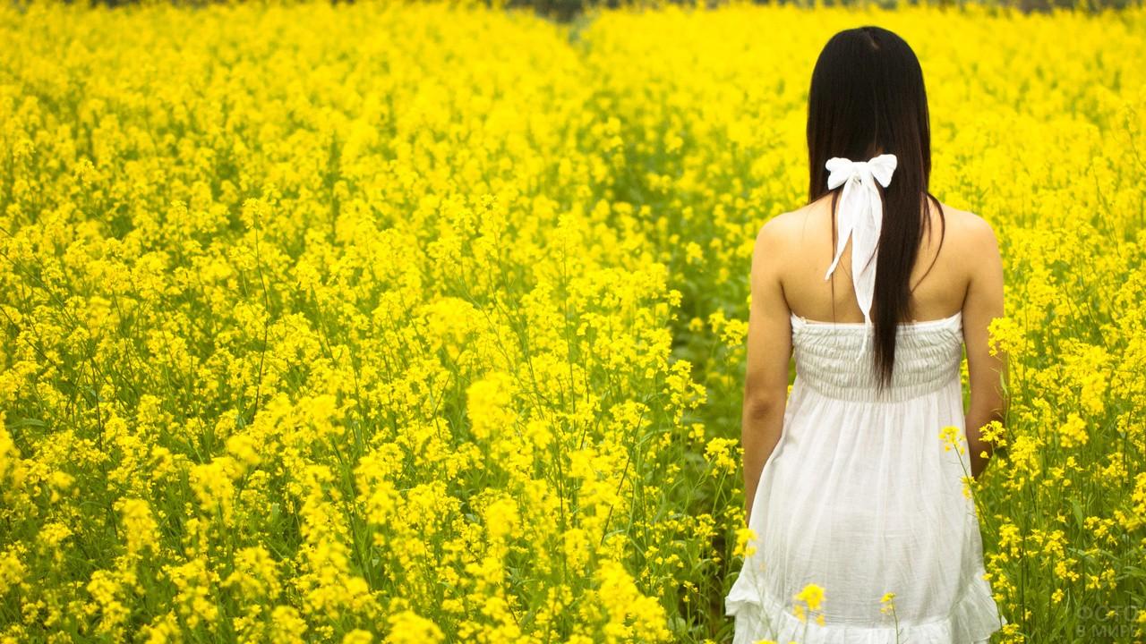 Девушка в поле с жёлтыми цветами