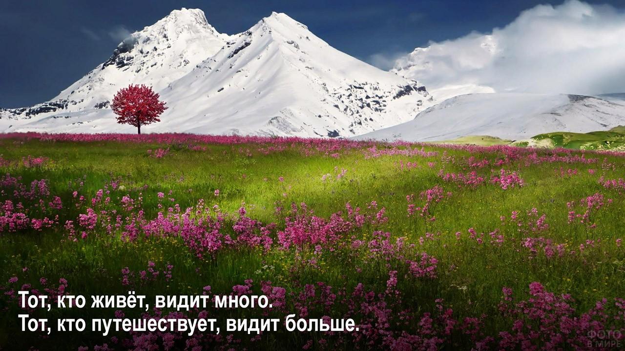 В пути видишь больше - весна в горах